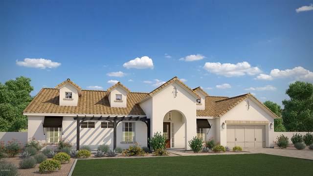 8424 N Diller Grove Lane, Phoenix, AZ 85021 (MLS #6071086) :: Brett Tanner Home Selling Team