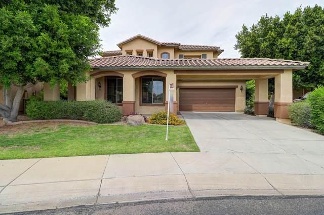 15364 W Post Circle, Surprise, AZ 85374 (MLS #6071487) :: Yost Realty Group at RE/MAX Casa Grande