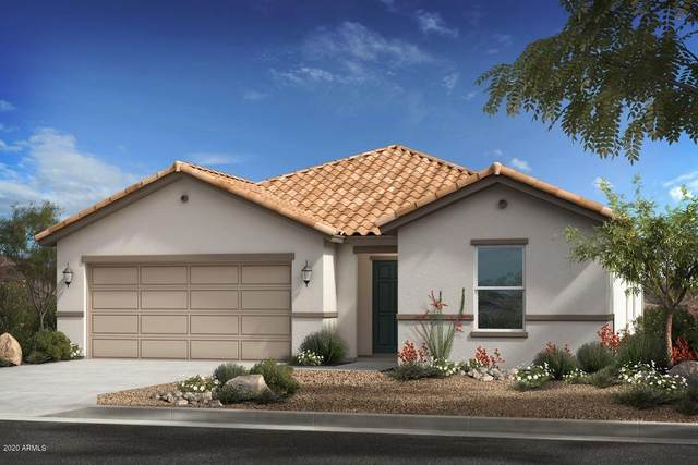 26867 N 173RD Lane, Surprise, AZ 85387 (MLS #6072762) :: The Everest Team at eXp Realty