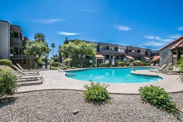 1645 W Baseline Road #1154, Mesa, AZ 85202 (MLS #6073024) :: My Home Group