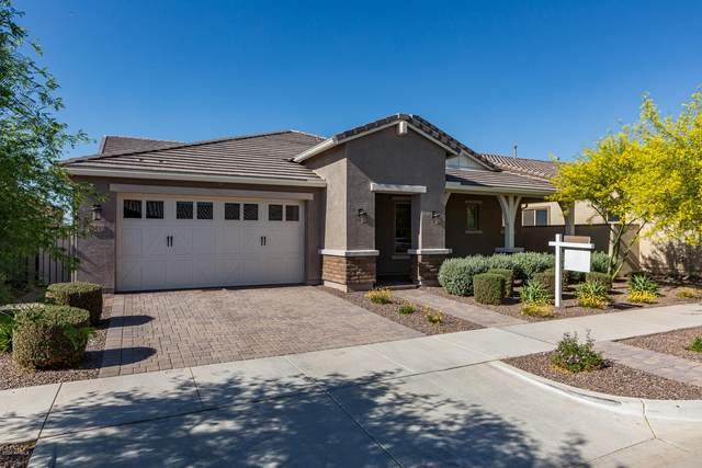 10532 E Relativity Avenue, Mesa, AZ 85212 (MLS #6073427) :: Balboa Realty