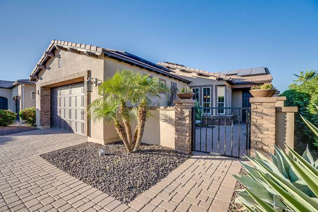 36493 N Crucillo Drive, San Tan Valley, AZ 85140 (MLS #6074146) :: Balboa Realty