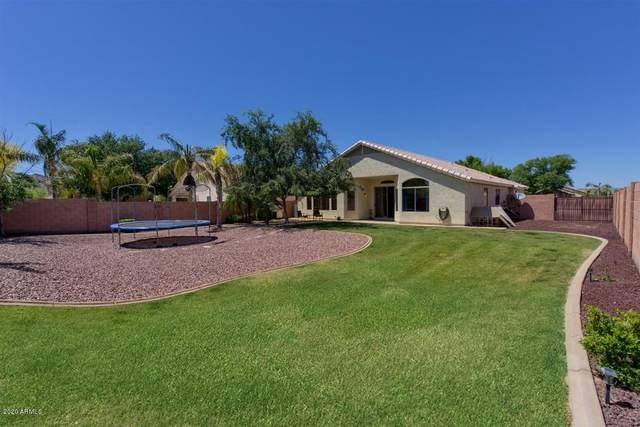 3923 W Quail Avenue, Glendale, AZ 85308 (MLS #6074194) :: Nate Martinez Team