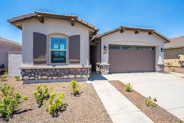 12802 N 145TH Lane, Surprise, AZ 85379 (MLS #6074345) :: Long Realty West Valley
