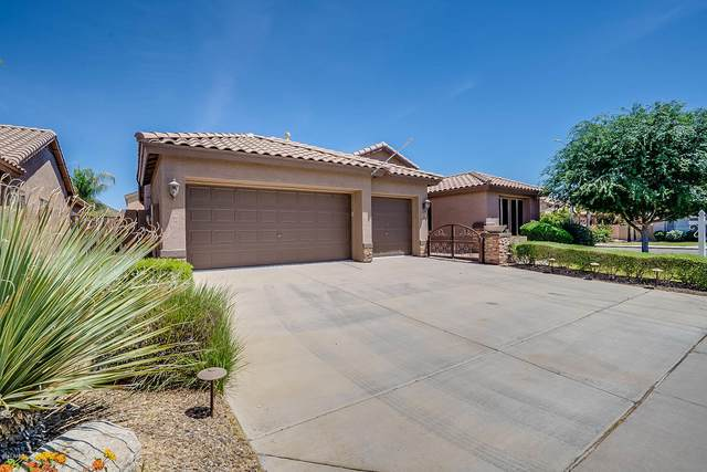 25633 N 71ST Drive, Peoria, AZ 85383 (MLS #6075580) :: Lux Home Group at  Keller Williams Realty Phoenix