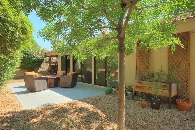 4525 N 66TH Street #87, Scottsdale, AZ 85251 (MLS #6075914) :: Nate Martinez Team