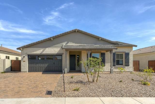 9350 W Patrick Lane, Peoria, AZ 85383 (MLS #6075948) :: Maison DeBlanc Real Estate