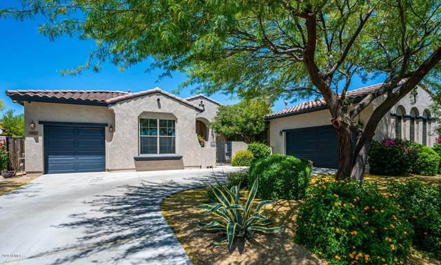 1516 W Brianna Road, Phoenix, AZ 85085 (MLS #6076236) :: The W Group