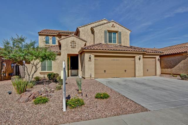 25550 N 103RD Drive, Peoria, AZ 85383 (MLS #6076280) :: Homehelper Consultants