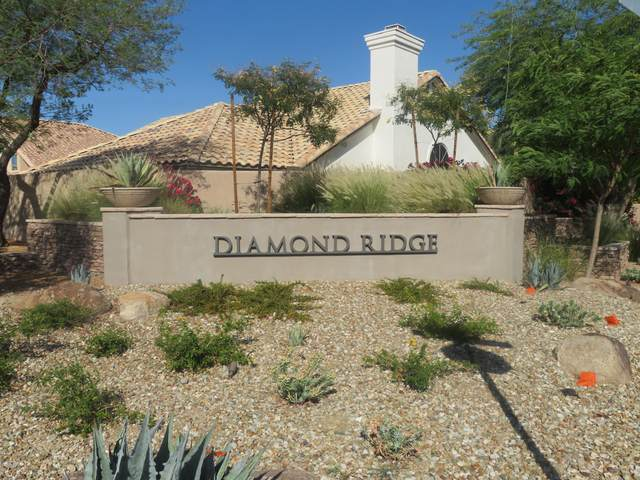 3647 E Park Avenue, Phoenix, AZ 85044 (MLS #6076359) :: Kepple Real Estate Group