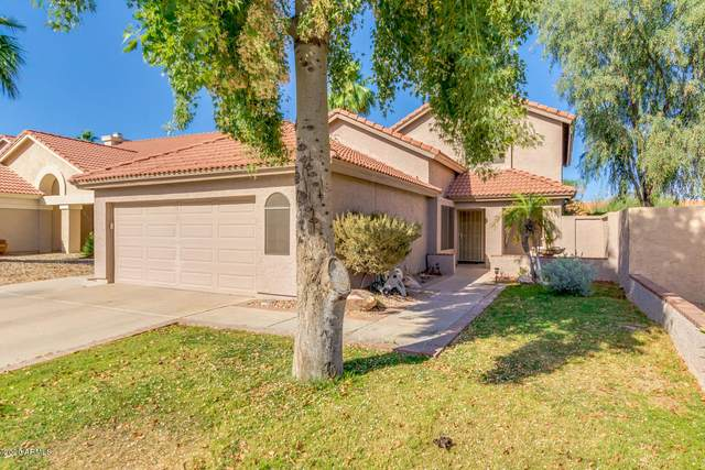 14249 S Cholla Canyon Drive, Phoenix, AZ 85044 (MLS #6076940) :: NextView Home Professionals, Brokered by eXp Realty
