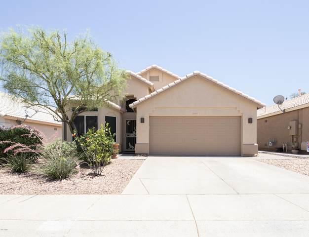 20007 N 22ND Place, Phoenix, AZ 85024 (MLS #6076979) :: Lifestyle Partners Team