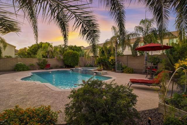 5124 W Trotter Trail, Phoenix, AZ 85083 (MLS #6077993) :: REMAX Professionals