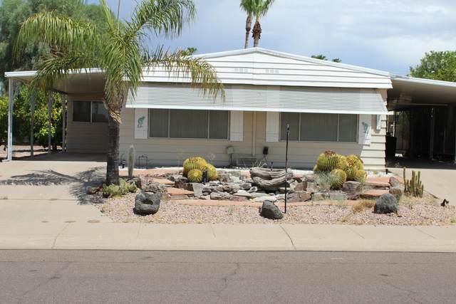 2531 N 56th Street, Mesa, AZ 85215 (MLS #6078065) :: Brett Tanner Home Selling Team