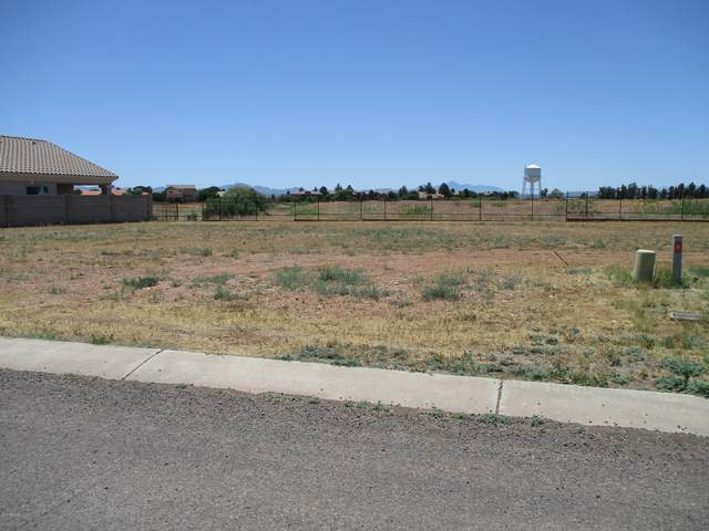 3650 Camino Del Rancho, Douglas, AZ 85607 (MLS #6078487) :: Midland Real Estate Alliance