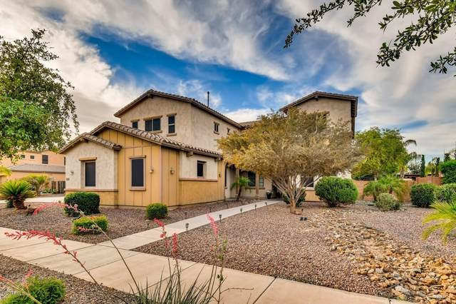 18742 E Braeburn Lane, Queen Creek, AZ 85142 (MLS #6078983) :: The Property Partners at eXp Realty