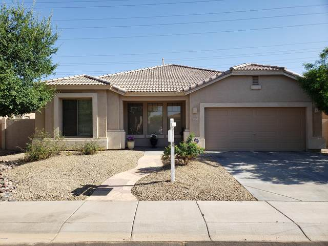 1675 E Aloe Place, Chandler, AZ 85286 (MLS #6079324) :: Klaus Team Real Estate Solutions