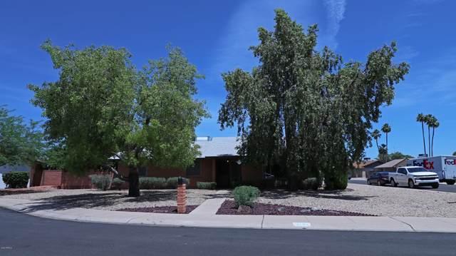 11201 N 36TH Drive, Phoenix, AZ 85029 (MLS #6079355) :: Devor Real Estate Associates
