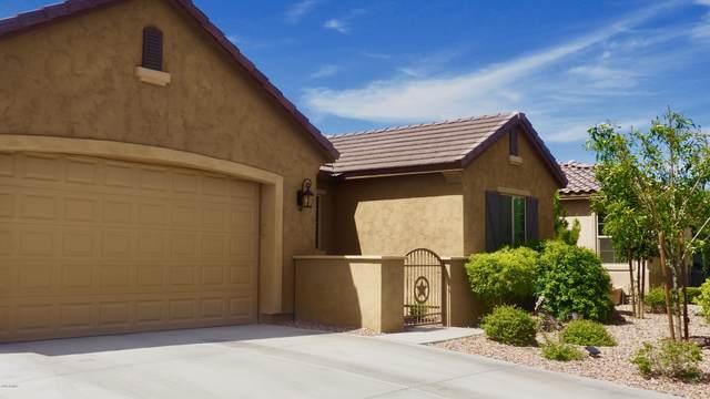 19740 W Sherman Street, Buckeye, AZ 85326 (MLS #6079515) :: Conway Real Estate
