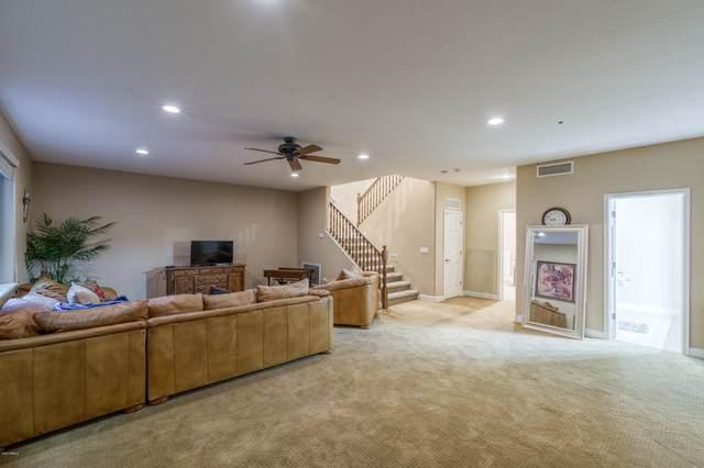 1570 W Grand Canyon Drive, Chandler, AZ 85248 (MLS #6079953) :: Keller Williams Realty Phoenix