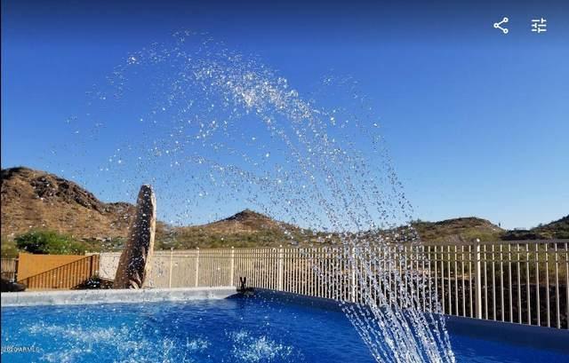 27265 N 82nd Avenue, Peoria, AZ 85383 (MLS #6080178) :: Devor Real Estate Associates
