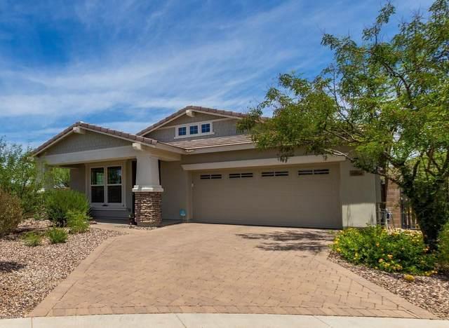 13256 W Copperleaf Lane, Peoria, AZ 85383 (MLS #6080319) :: The W Group