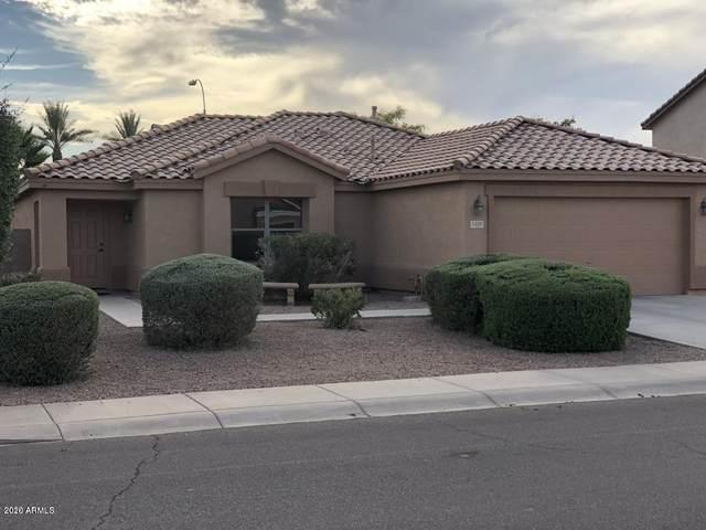 1330 S Eucalyptus Place, Chandler, AZ 85286 (MLS #6080778) :: The Daniel Montez Real Estate Group