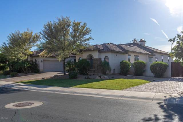 4882 N Barranco Drive, Litchfield Park, AZ 85340 (MLS #6081307) :: Selling AZ Homes Team