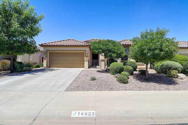 14822 W Luna Drive S, Litchfield Park, AZ 85340 (MLS #6081360) :: Klaus Team Real Estate Solutions