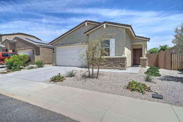 23668 W Watkins Street, Buckeye, AZ 85326 (MLS #6081739) :: Brett Tanner Home Selling Team