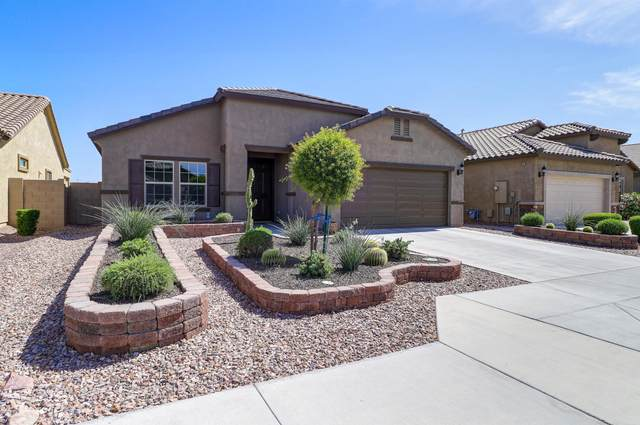 10831 W Nosean Road, Peoria, AZ 85383 (MLS #6081971) :: The W Group