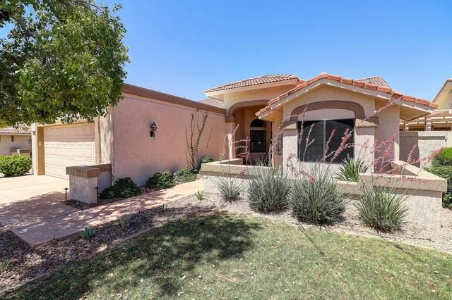 19810 N Zion Drive, Sun City West, AZ 85375 (MLS #6082328) :: Maison DeBlanc Real Estate