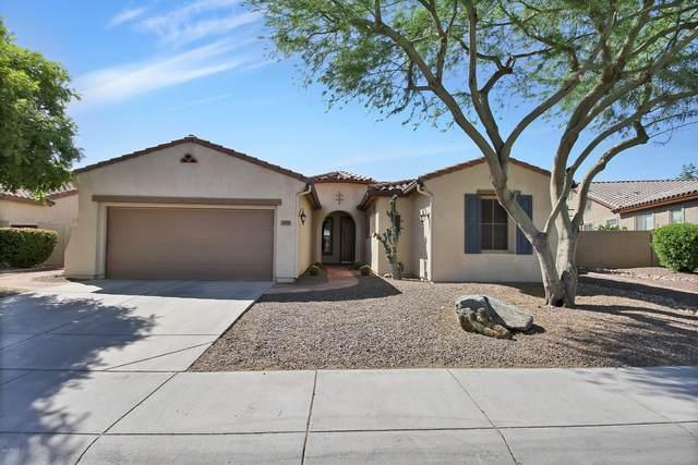 299 W Balsam Drive, Chandler, AZ 85248 (MLS #6082441) :: Keller Williams Realty Phoenix