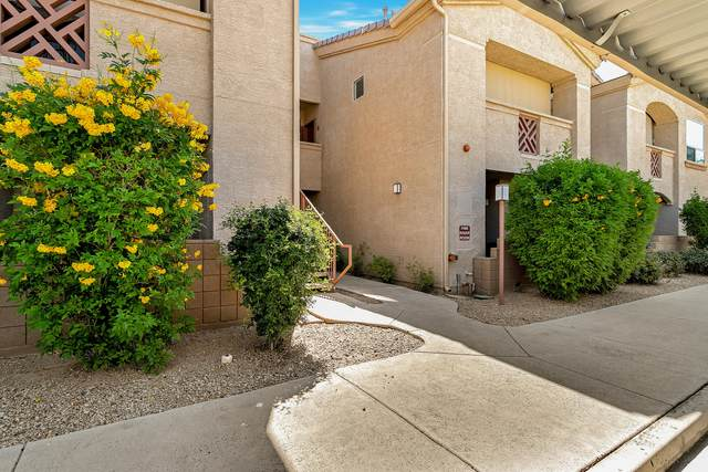 29606 N Tatum Boulevard #261, Cave Creek, AZ 85331 (MLS #6082532) :: Yost Realty Group at RE/MAX Casa Grande
