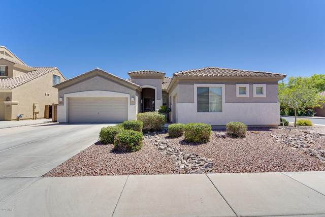 3293 E Bluebird Place, Chandler, AZ 85286 (MLS #6082661) :: Kepple Real Estate Group