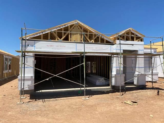 11650 E Verbina Lane, Florence, AZ 85132 (MLS #6082769) :: Selling AZ Homes Team