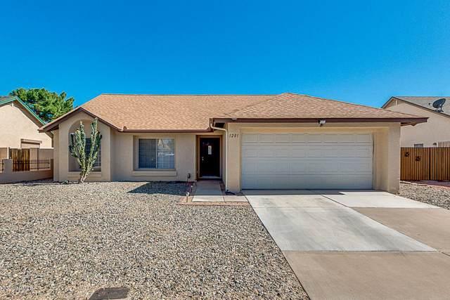 1201 W Oraibi Drive, Phoenix, AZ 85027 (MLS #6083317) :: The W Group
