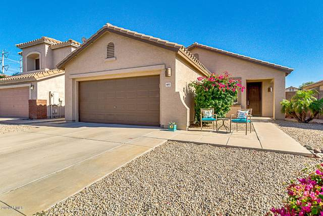 6693 W Ivanhoe Street, Chandler, AZ 85226 (MLS #6083332) :: Brett Tanner Home Selling Team