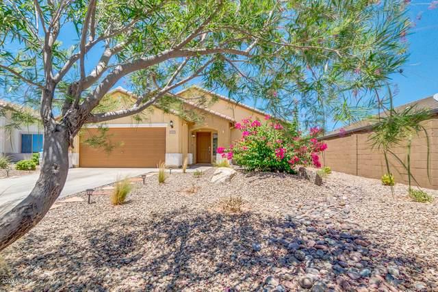 2128 N Daisy Drive, Florence, AZ 85132 (MLS #6083353) :: Dave Fernandez Team | HomeSmart