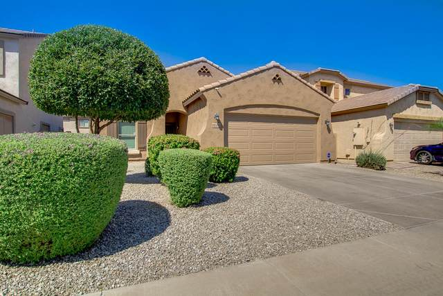 5334 W Fremont Road, Laveen, AZ 85339 (MLS #6083358) :: The W Group