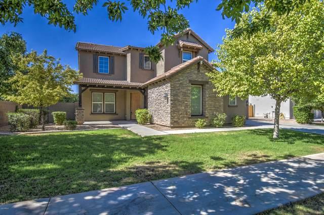 3689 E Morrison Ranch Parkway, Gilbert, AZ 85296 (MLS #6083524) :: Conway Real Estate