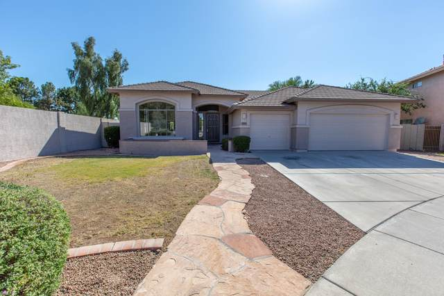 820 N Bullmoose Drive, Chandler, AZ 85224 (MLS #6083943) :: Lux Home Group at  Keller Williams Realty Phoenix