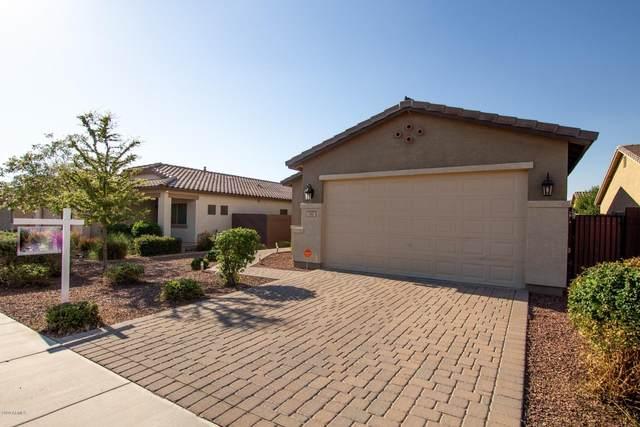 390 W Flame Tree Avenue, San Tan Valley, AZ 85140 (MLS #6084144) :: My Home Group