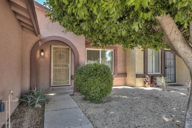 3228 W Blackhawk Drive, Phoenix, AZ 85027 (MLS #6084757) :: Revelation Real Estate