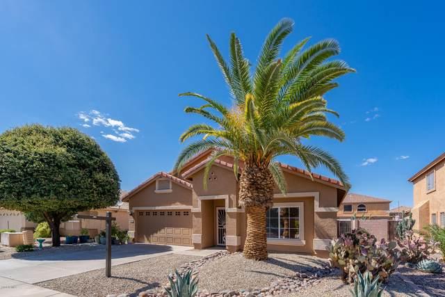15850 W Redfield Road, Surprise, AZ 85379 (MLS #6085021) :: Homehelper Consultants