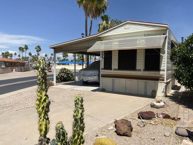 1107 W Chippewa Avenue, Apache Junction, AZ 85119 (MLS #6085460) :: Conway Real Estate