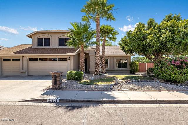23821 N 44TH Lane, Glendale, AZ 85310 (MLS #6085854) :: Dijkstra & Co.
