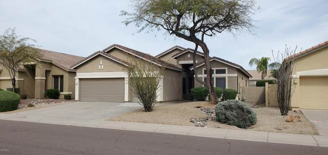 26633 N 42ND Street, Cave Creek, AZ 85331 (MLS #6085861) :: Openshaw Real Estate Group in partnership with The Jesse Herfel Real Estate Group
