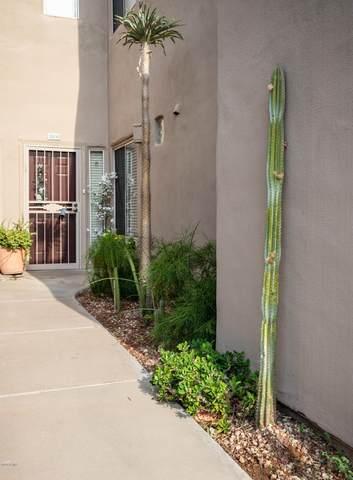 11260 N 92ND Street #1026, Scottsdale, AZ 85260 (MLS #6086919) :: Conway Real Estate