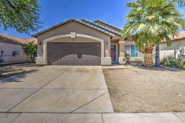 3036 W Covey Lane, Phoenix, AZ 85027 (MLS #6087040) :: Nate Martinez Team
